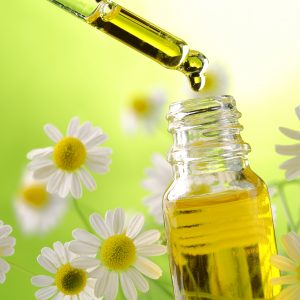 Stock image of essential oils with daisies